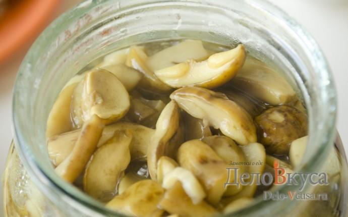 Маринованный горький перец на зиму  рецепты заготовки