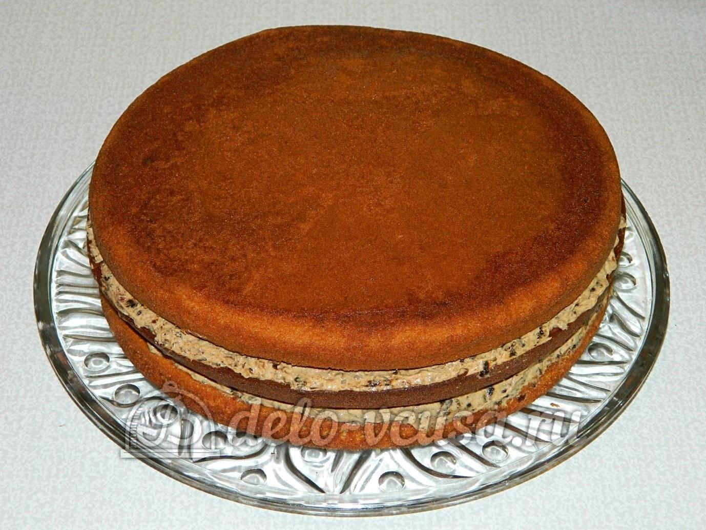 Торты бисквитный рецепты пошагово в