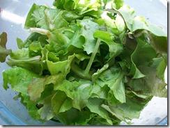 Салат из редиски и огурца: Листовой салат порвать руками