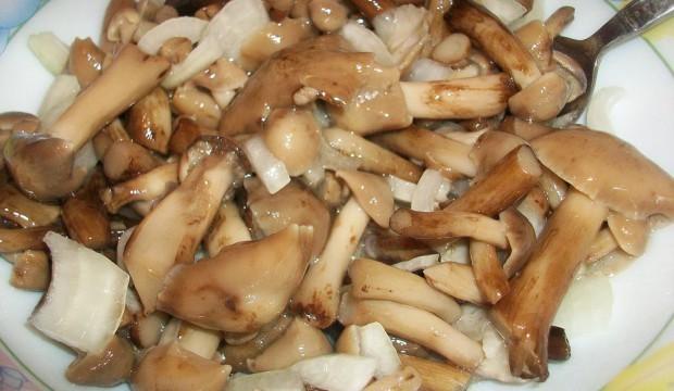 Салат из маринованных опят с луком. Маринованные грибы с луком