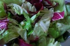 Салат-латук с красным цекорием