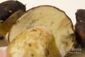 Польский гриб. Как собирать, чистить и варить польский гриб: фото к шагу 2.