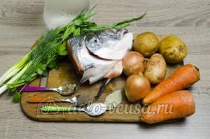 Уха из головы семги: Ингредиенты