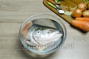 Рецепт приготовления ухи из головы семги
