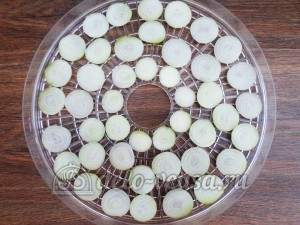Овощная приправа: Кладем лук в сушку