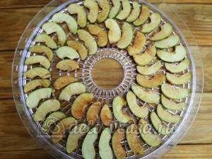 Сушка из яблок: Разложить яблоки на сушку