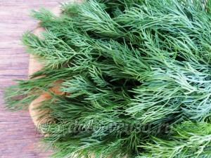 Овощная приправа: Зелень укропа промыть и просушить