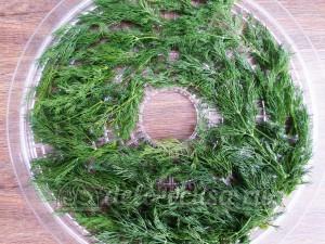 Овощная приправа: Зелень укропа сложить в контейнер сушки