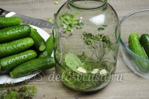 Малосольные огурцы: Специи и зелень уложить на дно банки