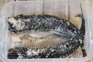 Маринованная скумбрия: Засыпать рыбу солью