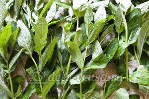 Мятный сахар: Листья мяты просушить