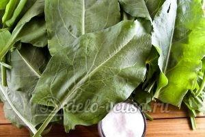 Щавель на зиму с солью: Ингредиенты