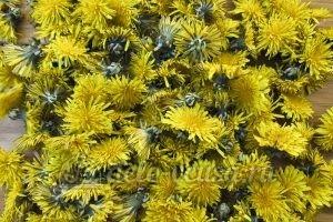 Варенье из одуванчиков: Подготовить цветы