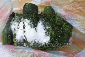 Малосольные огурцы в пакете: Добавляем к огурцам чеснок, соль и зелень укропа
