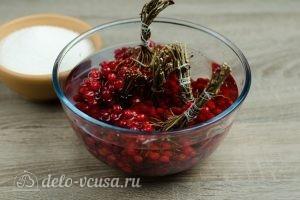 Калина перетертая с сахаром: Вымыть ягоды