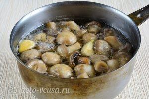 Маринованные шампиньоны в домашних условиях: Варить грибы в маринаде