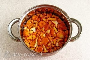Суп из свежих лисичек: Залить грибы водой