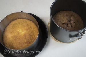 Шоколадный торт Дуэт: Остудить бисквиты