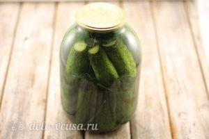 Соленые огурцы с водкой: Дать огурцам забродить