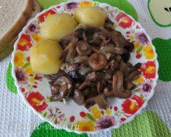 Жареные грибы с чесноком готовы