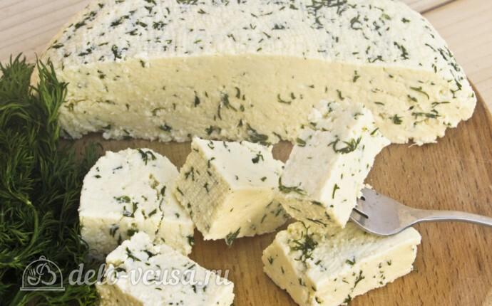 Адыгейский сыр с укропом в домашних условиях