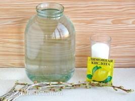 Березовый сок с веточкой смородины на зиму: Ингредиенты