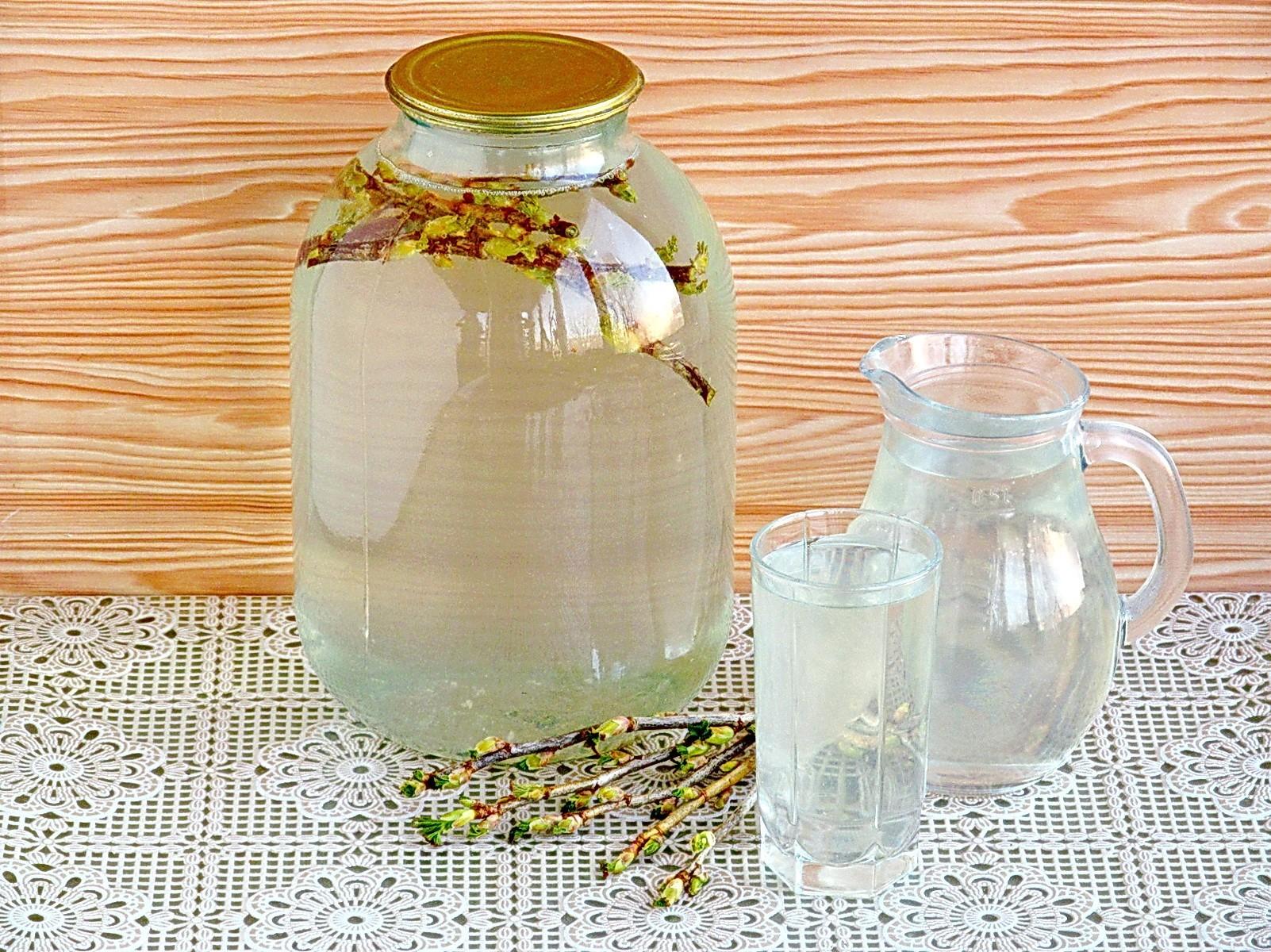 Березовый сок с веточкой смородины на зиму