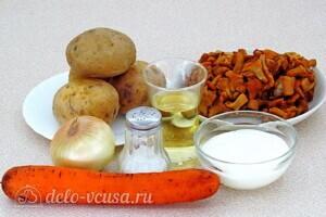 Картофель с лисичками в сметане: Ингредиенты