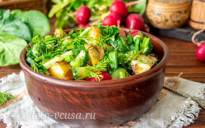 Рецепт теплый картофельный салат с редиской и зеленью