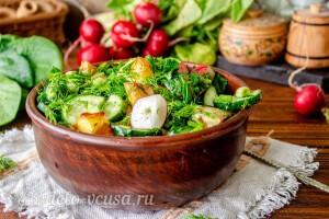 Теплый картофельный салат с редиской и зеленью готов