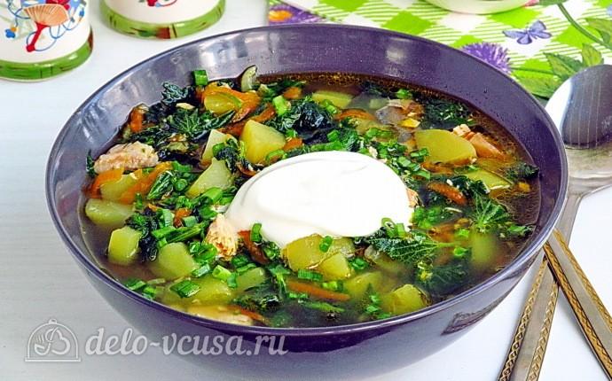 Суп из крапивы с консервированной горбушей
